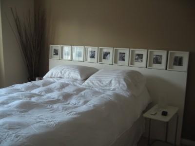 Bedpics