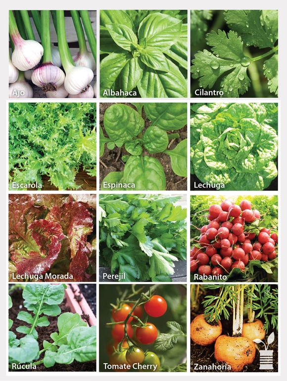 Cultivos-Plantero-OK-LOGO